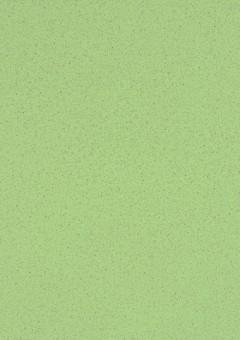 fundermax 0610 Hellgrün + Astro