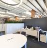 hpl_funderma_roshen_office_1.jpg